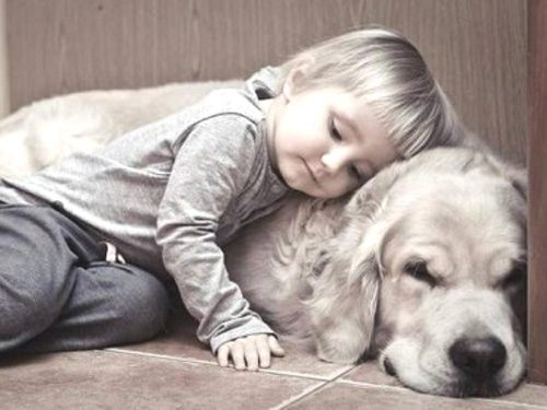 a kids animals 25 Daily Awww: Cute kids, cute animals = double win! (34 photos)