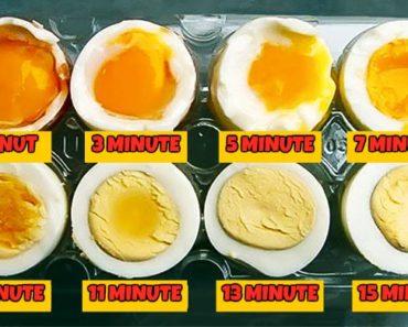 cat-timp-trebuie-fiert-un-ou.jpg